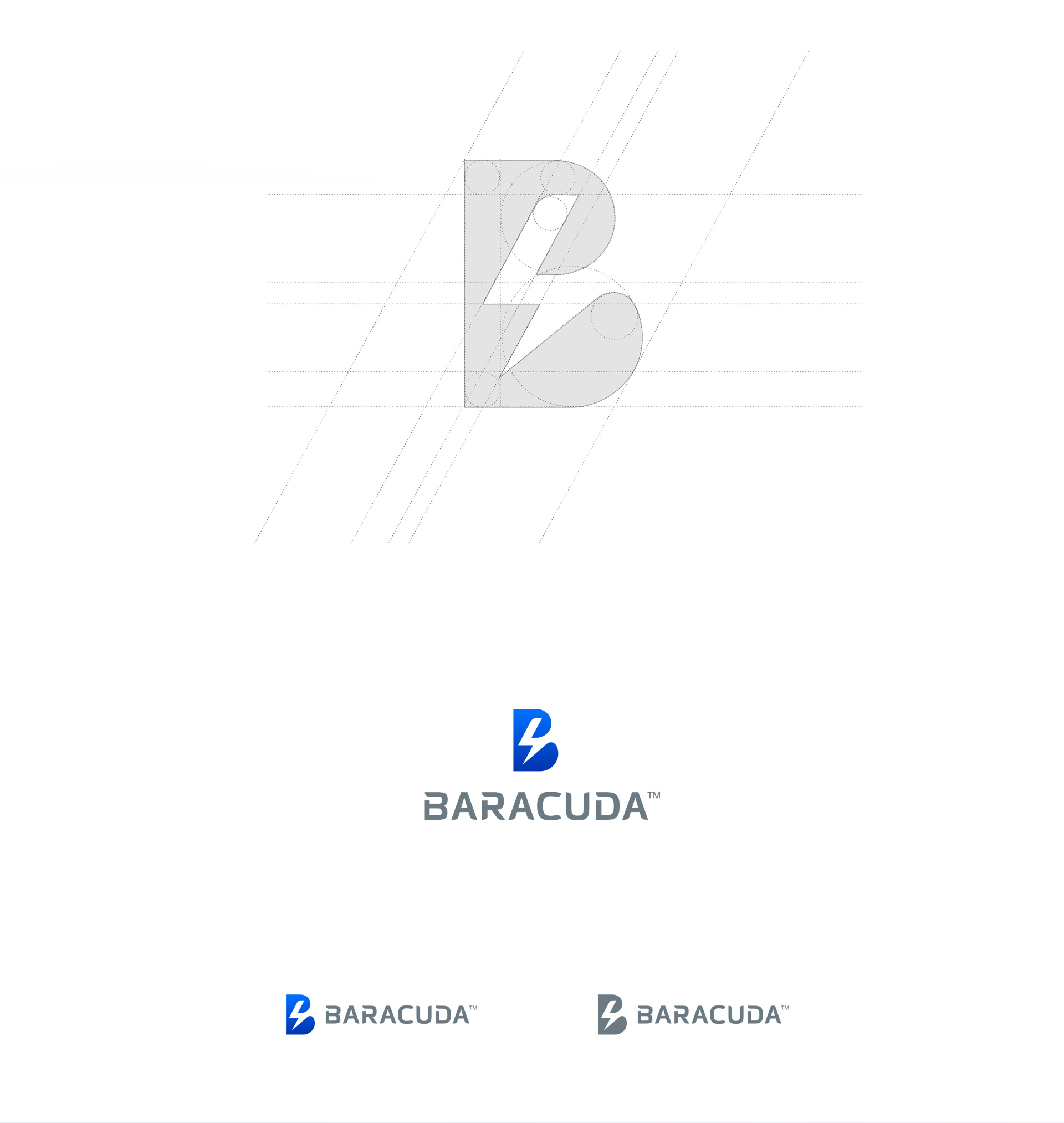 Prezentacja logo firmy Baracuda oraz grid logo