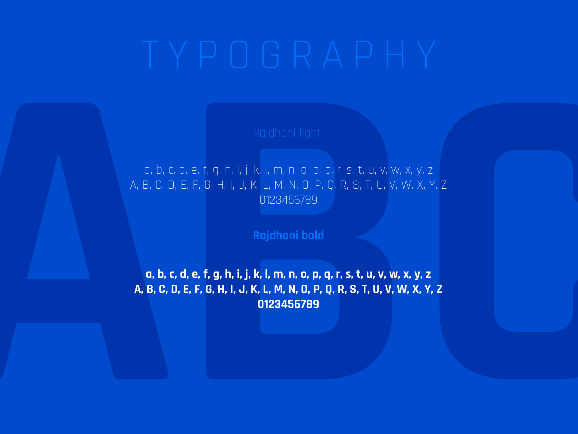 Użyta typografia w brandingu firmy baracuda
