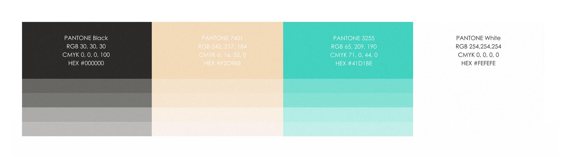 Użyte kolory do projektu